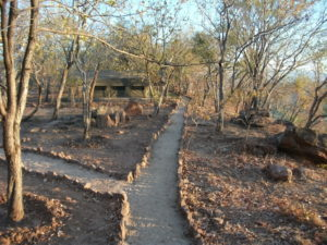 Camp landscaping in Zimbabwe
