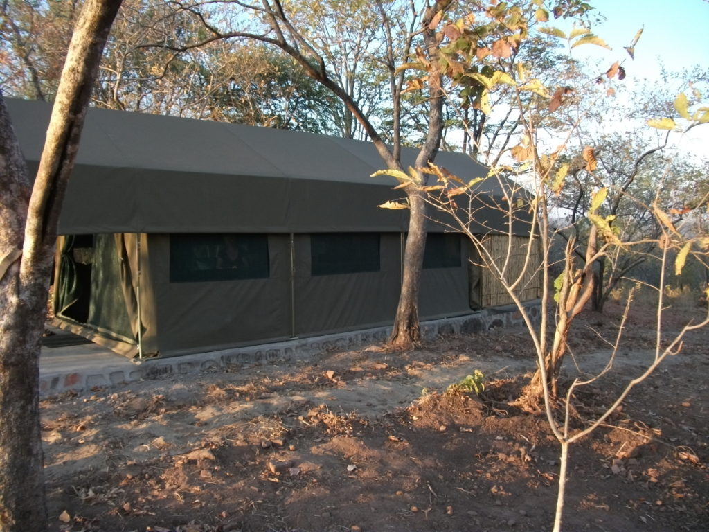 Luxury Camp Tent in Dande Concession