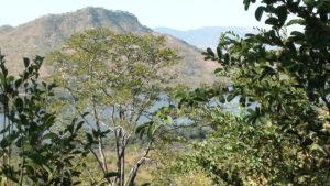 Zambia Vista