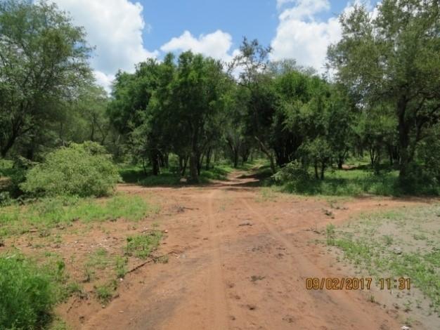 hunting road in zimbabwe